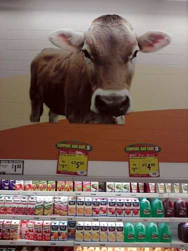 See a cow every day with this dairy cow at Food4Less