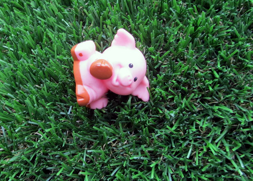 Little People pig in our backyard