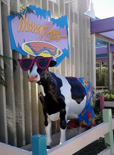 Lifesize cow statue at SeaWorld San Diego