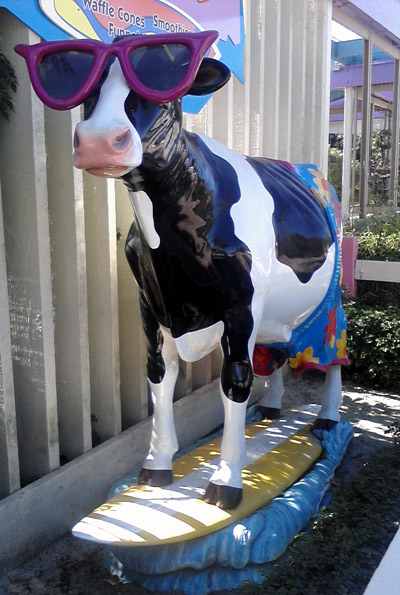 Surfer cow statue at SeaWorld San Diego