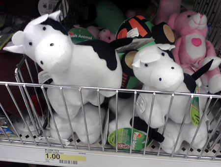 Daily cow at Target - plush cow