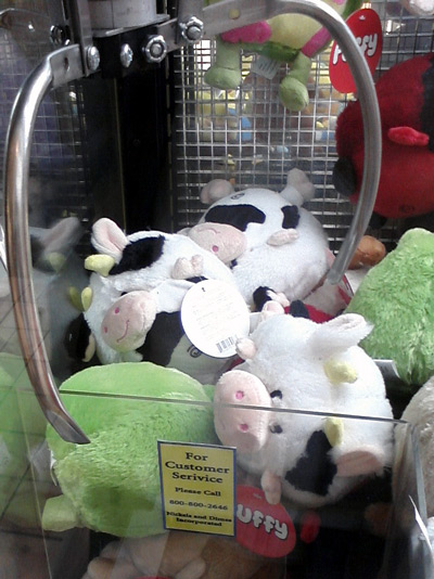See a cow every day at the mall, in the claw machine