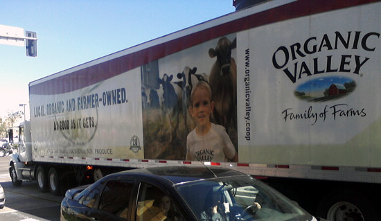 Organic Valley truck with lots of cows!