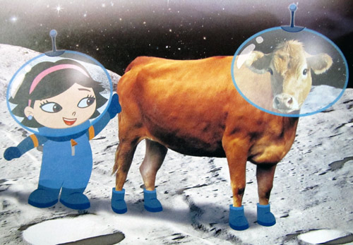 June's shoes - cow #3 is on the moon with June