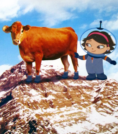 June's shoes - cow #5 on Mount Everest