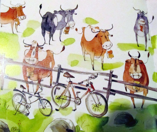 Bonanza of cows