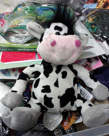 Rebel cow with a mohawk