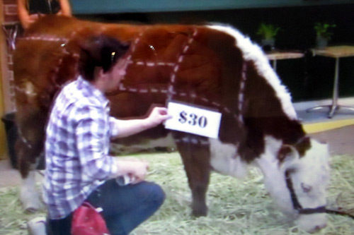 Pricing of beef meat on a cow during Jamie Oliver's Food Revolution ABC show