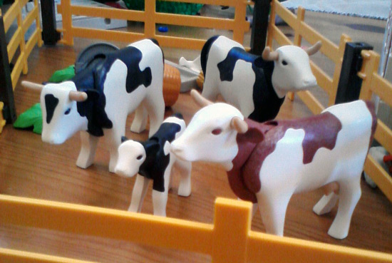 Playmobil farm - dairy cows on their feet