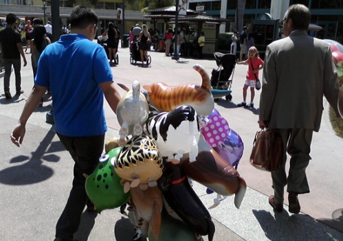 Cow balloon among other animal balloons