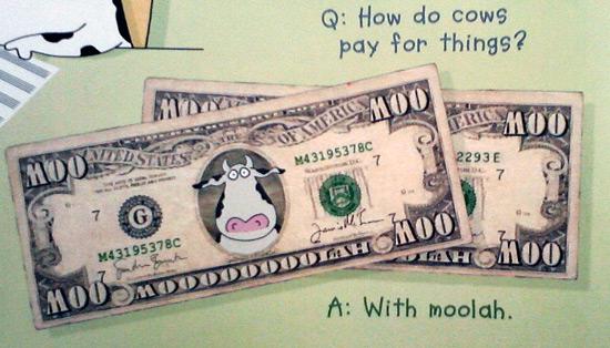 Cow joke in Sandra Boynton' Amazing Cows book