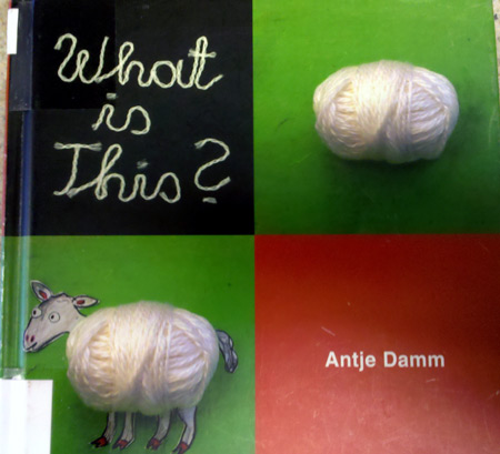 What is this? book by Antje Damm