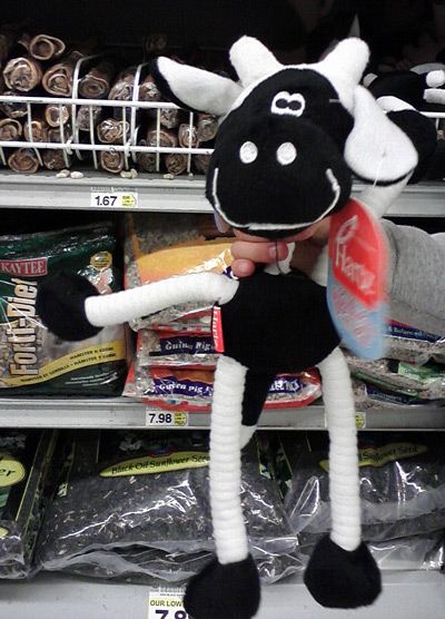 Toy dog black and white cow