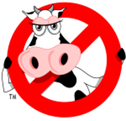 The no-moo cow from Moo Free chocolates
