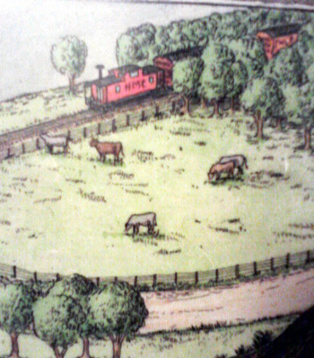 Cows and train in Geisert's Oops book