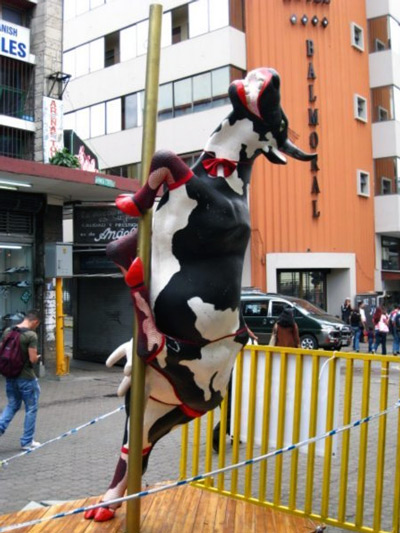 Pole dancing cow from the Cow Parade