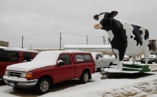 20 foot tall fiberglass cow