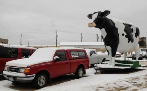 20 foot tall fiberglass cow