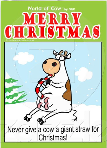 Cow Christmas card from Stick, World of Cow - giant straw