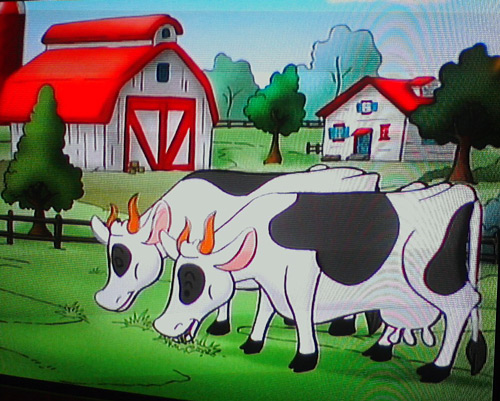 Cows on Curious George