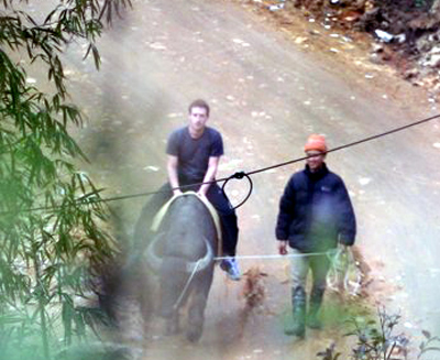 Facebook Mark Zuckerberg riding a water buffalo in Vietnam