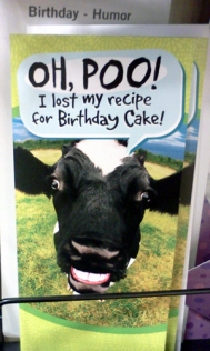 Cow birthday card