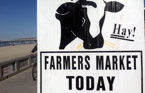 Farmer's market sign with cow on San Diego beach