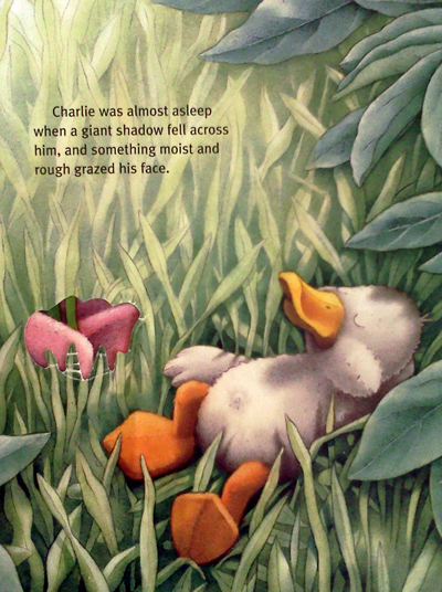 Charlie at the zoo book - a duck meets other animals