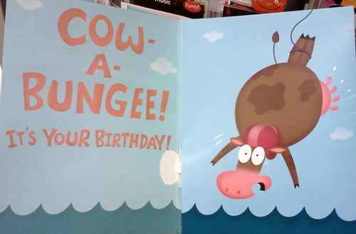 Birthday card with bungee jumping cow - cow-a-bungee!