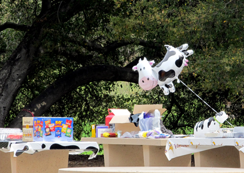 Cow birthday party decorations