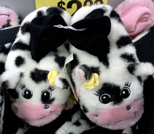 Cute cow slippers
