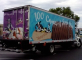 Skinny Cow ice cream delivery truck