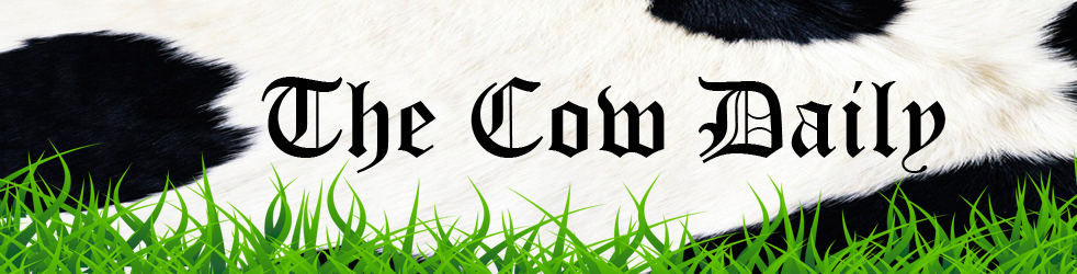 The Cow Daily - every day I see a cow